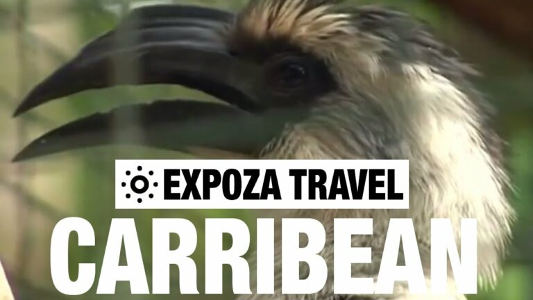 The Caribbean Vacation Travel Video Guide