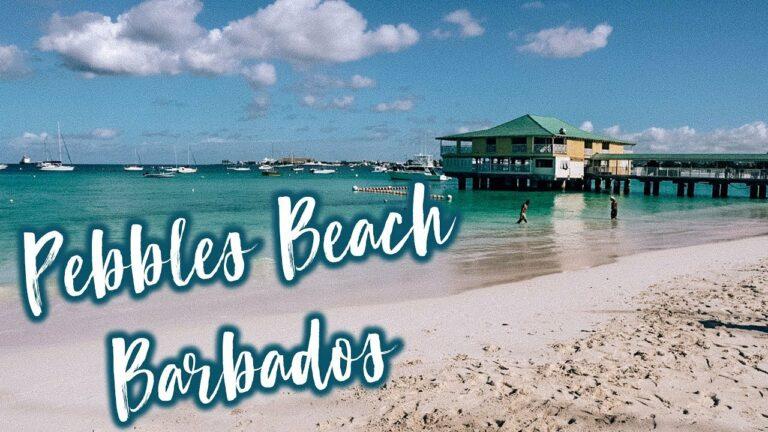 CRUISE TO BARBADOS? This beach is amazing! #barbados #caribbean #travel #adventure #islandtour